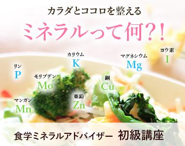 食学ミネラルアドバイザー初級講座