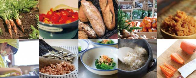 あらゆる食の分野に役立つ基礎知識